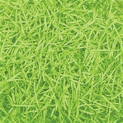 Kiwi Easter Grass | Party Supplies