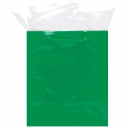 Green Mini Solid Glossy Paper Bags | Party Supplies