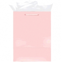 Pink Mini Solid Glossy Bags | Party Supplies