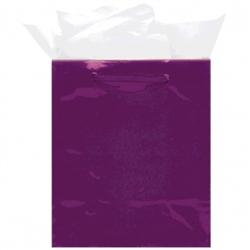 Purple Mini Solid Glossy Bags | Party Supplies