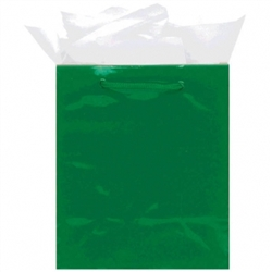 Green Medium Solid Glossy Paper Bags | Party Supplies