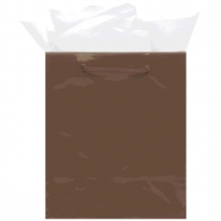 Chocolate Brown Medium Solid Glossy Bags | Party Supplies