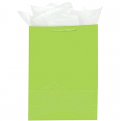 Kiwi Medium Solid Glossy Bags | Party Supplies