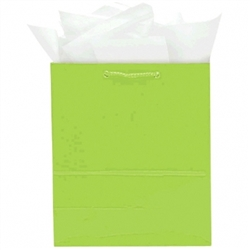 Kiwi Jumbo Solid Glossy Bags | Party Supplies