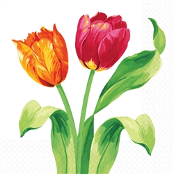 Bright Tulips Beverage Napkins | Party Supplies