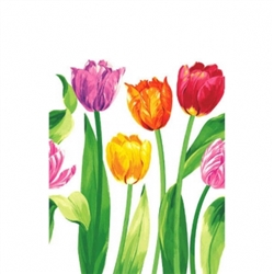 Bright Tulips Plastic Table Cover | Party Supplies