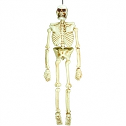 Life Size Skeleton | Party Supplies