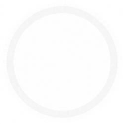 "Frosty White 10-1/2"" Paper Plates 