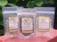 Female Herbal Breast Enhancement Kit - 3x 100x Pure Herbal Capsules