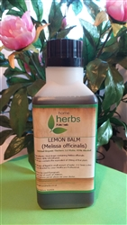 Lemon Balm (Melissa officinalis) - 500ml Organic Tincture