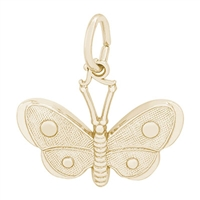 Rembrandt Butterfly Charm, Gold Plated Silver
