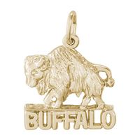 Rembrandt Buffalo New York Charm, Gold Plated Silver