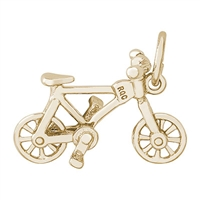 Rembrandt Bicycling Charm, Gold Plated Silver