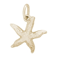 Rembrandt Starfish Charm, Gold Plated Silver