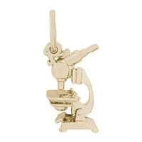 Rembrandt Microscope Charm, Gold Plated Silver
