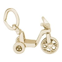 Rembrandt Tricycle Charm, Gold Plated Silver