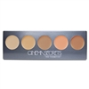 Cinema Secrets Ultimate Corrector 5-In-1 Palette #1