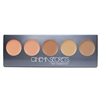 Cinema Secrets Ultimate Corrector 5-In-1 Palette #2