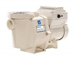 Pentair IntelliFlo Pool Pump 011055