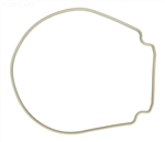 Pentair 357102 Whisperflo Seal Plate Gasket - Tan