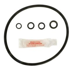 Hayward CL200 oring kit