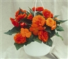 Begonia Tub Non Stop Orange