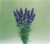 Larkspur Cannes Deep Blue