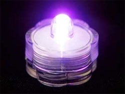 Brilliant Submersible Vase Lights  LED 12/pk  Purple