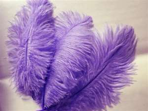 12 Fabulous Ostrich Feathers - Purple