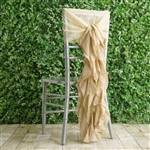 Champagne Chiffon Hoods With Curly Willow Chiffon Chair Sashes