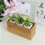 11x6'' Natural Rectangular Wood Planter Box Set With Removable Plastic Liners - 4 Pack