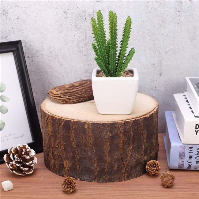 4in Thick Poplar Wood Slice Centerpiece Table Decoration Slab