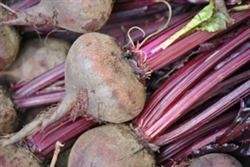 Beets, Red ~ 1 bunch