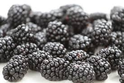Blackberries - 6oz clamshell
