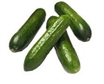 European Cucumber ~ 1 lb (3 to 4 small cukes)