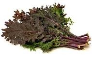 Kale, Red - 1 bunch