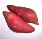 Sweet Potatoes, Garnet ~ 2lbs