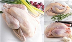"Whole ""Naked Bird"" Chicken, 3 to 3.5 lbs"