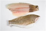 FRESH Fish Wild Caught Red Drum Fillet  ~ 1lb