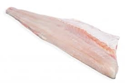 FRESH Fish Wild Caught Speckled Sea Trout Fillet  ~ 1lb