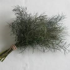 Bronze Fennel - 1 bunch