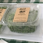 Broccoli Sprout Microgreens ~ 2 oz clamshell