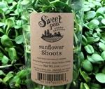 Sunflower Shoots Microgreens ~ 2 oz compostable cup
