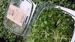 Superfoods Mix Microgreens ~ 2oz clamshell