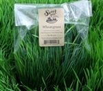 Wheatgrass Microgreens (large) ~ 8 oz bag