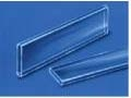 Borosilicate Glass Extra Wide 50 mm long only0.05 mm ID x 1.00 mm width, 0.05 mm wall, 50 PCS/vial