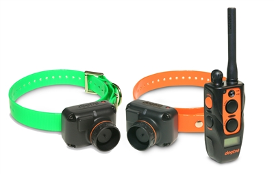 DOGTRA 2702T&B Training & Beeper Collar