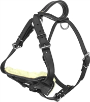 Active Dogs Padded Leather Harness - Black