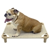 "4 Legs 4 Pets 40"" x 40"" x 5"" Small Premium Tweed Square Elevated Dog Bed Cot"