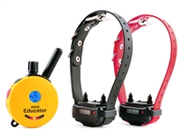 E-Collar 2 Dog Mini Educator 1/2 Mile Remote Dog Trainer